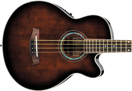 cheap acoustic bass guitar
